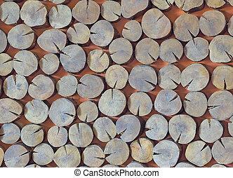 木, 切口, 手ざわり, 背景