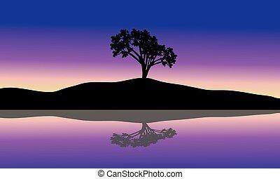 木, 単一, シルエット, 風景
