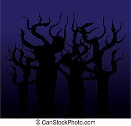 木, 夜で