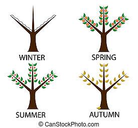木, 季節, 4