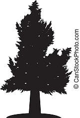 木, 孤独, シルエット