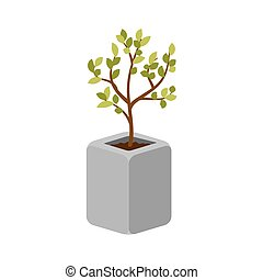 木, 屋外, 植物, 中に, a, コンクリート, ポット, ベクトル, isolated.