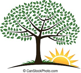 木, 日の出, ベクトル, ロゴ