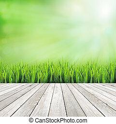 木, 板, 上に, 緑, 自然, 抽象的, 背景