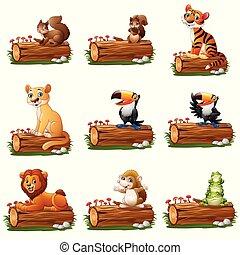 木, 漫画, 動物, 丸太