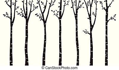 木, 白, シルエット, 背景, シラカバ