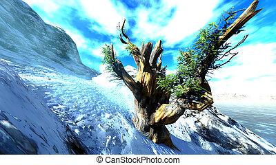 木, 神聖