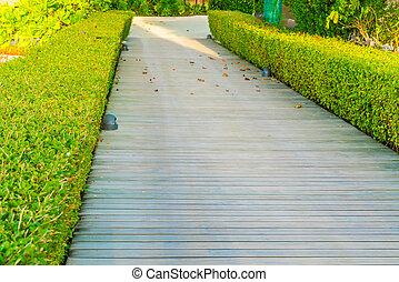 木, 緑, 庭, 方法