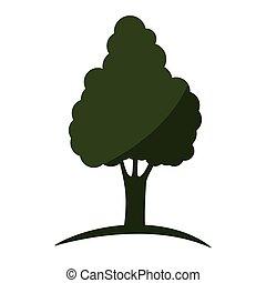 木, 緑, 自然