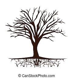 木, 葉, なしで, branchs, トランク