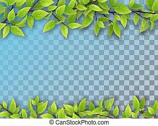 木, 葉, セット, ブランチ, 緑