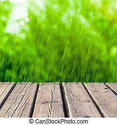 木, 通り道, そして, 雨, 背景