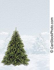 木, 雪, クリスマス