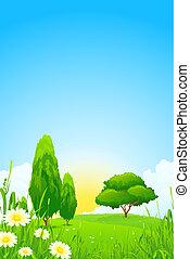 木, 風景, 緑