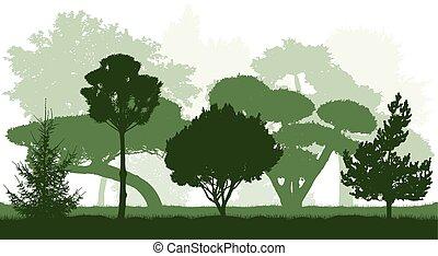 木, silhouettes., ベクトル, 植物, illustration., 装飾用, garden.
