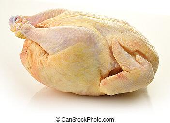 未加工, 小雞