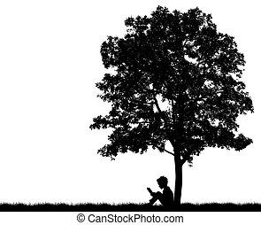 本, 木, シルエット, 下に, 子供, 読まれた