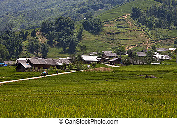 村庄, 近, sapa, 越南
