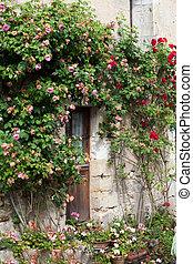 村舍, 由于, 玫瑰, 大約, 門