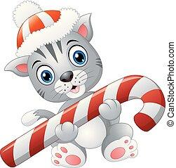 杖, クリスマス, キャンデー, ねこ