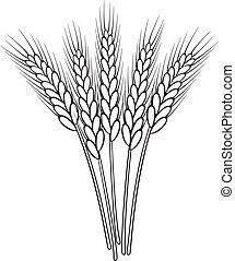 束, 矢量, 黑色 和 白色, 小麥, 耳朵