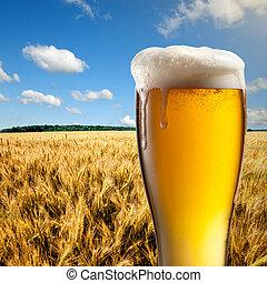 杯啤酒, 針對, 小麥田地, 以及藍色, 天空