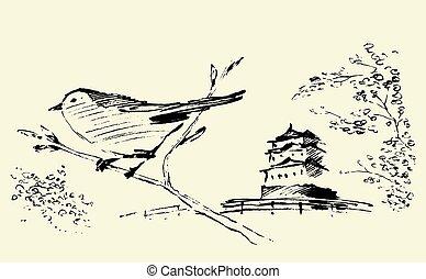 東洋人, sakura, 鳥, 引かれる, ベクトル, スケッチ
