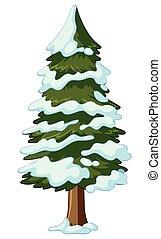 松の木, カバーされた, ∥で∥, 雪