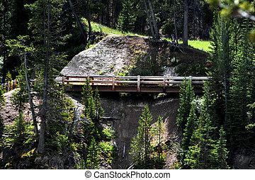 板張り遊歩道, 峡谷, のまわり
