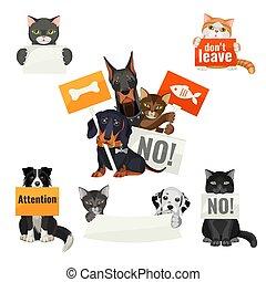 板, いいえ, 抗議する, 動物, いじめ, ネコ, 犬