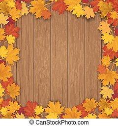枫树, 广场, 分支, 背景, 木制的框架, 树