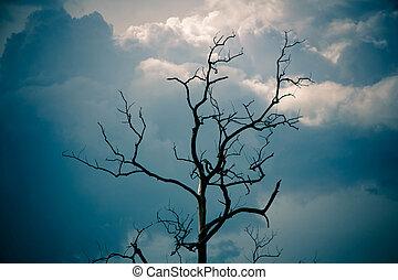 枯れた木, 青い空, 下に