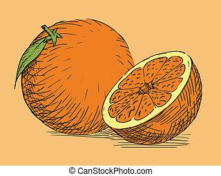 柑橘類, 引かれる, 手, オレンジ