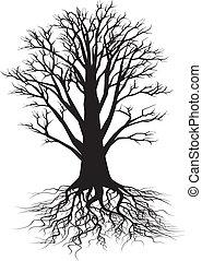 树, 侧面影象