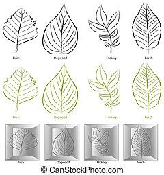 树, 放置, 叶子, 类型