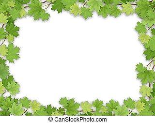 框架, 绿色的树叶, 枫树
