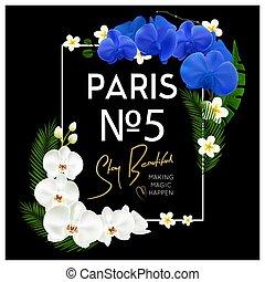 框架, 蘭花, 黑色的背景, 香水