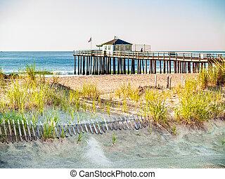 桟橋, 海洋釣, 木立ち