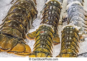 梭子魚, 銷售, 尾巴, 地方, 龍蝦, 西雅圖, 市場