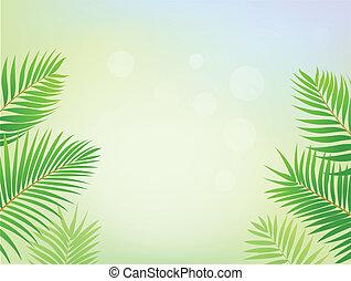 棕櫚, 框架, 樹, 背景