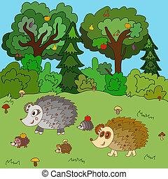 森林, ハリネズミ, 林間の空き地, 家族, 歩きなさい