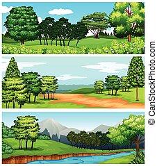 森林, 三, 領域, 場景