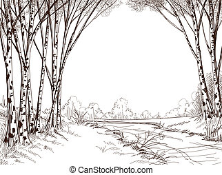 森林, 圖表, 樹, 背景, 樺樹