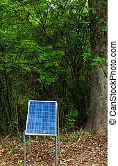 森林, 太陽 パネル