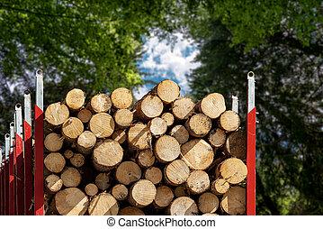 森林, 届く, 木製である, 松, トラック, 木材を伐採する, 木