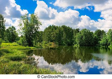森林, 湖