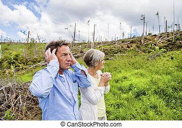 森林, 災害