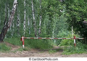 森林, 障壁