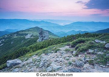 森, 絵のよう, 日光, 朝, scene., 白熱, 劇的, 威厳がある, twilight., 光景