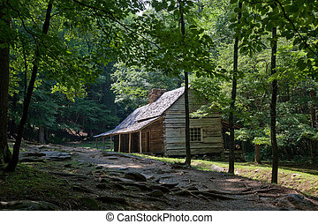 森, 緑, 丸太小屋